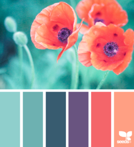 true tinted color palettes by Design Seeds