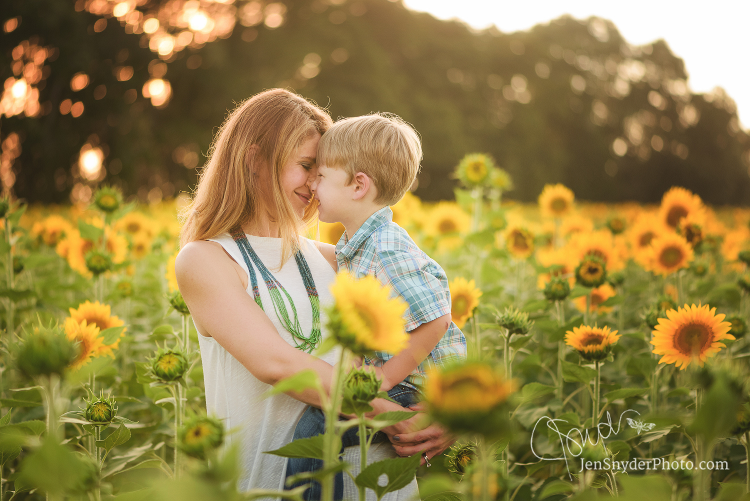 sunflower family portraits in Jarrettsville MD by harford county professional photographer Jen Snyder http://www.jensnyderphoto.com